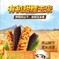 【疆农家有机种植糯玉米】10根8花2黑新疆特产五彩糯非转基因鲜食
